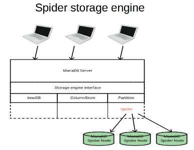 spider_overview
