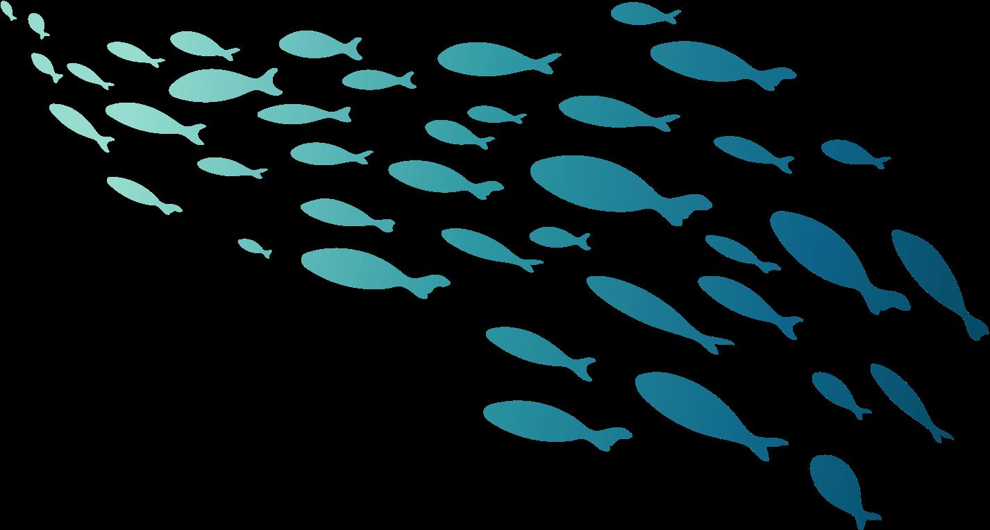 MariaDB OpenWorks Fish